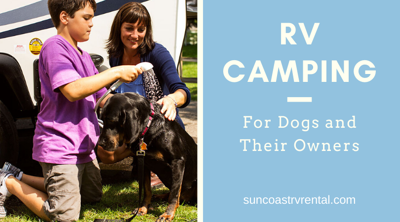 RV Camping For Dogs And Their Owners
